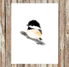 Hey, I found this really awesome Etsy listing at https://www.etsy.com/listing/247213659/chickadee-print-baby-bird-prints-baby