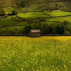 Swaledale, Yorkshire, England - Yorkshire is the setting of the Secret Garden, Wuthering Heights, and other favorites