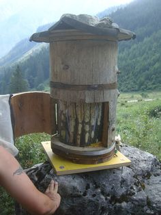 Holzer Style Log Bee Hive | Wood and straw hives allow the hive to breathe, while also avoiding draughts and providing insulation during the winter. This link provides instructions on how to build a log hive, and interesting discussion on other beekeeping matters in the comments section!  Image: Living Hive by PerpetualGreenGardens, via Flickr