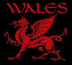 Welsh Dragon - Y Ddraig Goch' Wales Flag, Wales Rugby, Viking Dragon, Welsh Dragon, Y Ddraig Goch, Tudor Monarchs, Celtic Music, National Symbols, Red Dragon