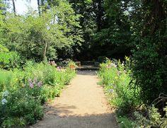May Dreams Gardens: The Gardens of Elizabeth Lawrence