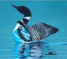 Google Image Result for http://planetforward.ca/blog/wp-content/uploads/2011/09/Larry-the-Loon-Canadian-Wildlife-Federation.jpg