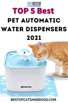 Automatic Water Dispensers Help Encourage Your Pet To Drink More. The Constant Water Circulation Prevents Bacteria Growth, While The Filters Remove Bad Tastes And Odors. Check Out Our TOP 5 Best Pet Automatic Water Dispensers 2021 Review. Read More Here! #PetWaterFountainDispenser #PetAutomaticWaterDispensers #Cats #Dogs #Affiliate