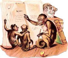 Oblaten Glanzbild scrap die cut chromo  Affe monkey Katze cat lernen Buch book