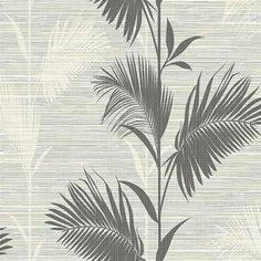 Away On Holiday Black Palm Modern Botanical Designed pattern, A monochrome palm leaf wallpaper fit for a modern tropics home. The black, white, and grey design is a new look for this classic pattern. Thin strings create a tactile textured top layer. Palm Leaf Wallpaper, Trellis Wallpaper, Botanical Wallpaper, Brick Wallpaper, Wallpaper Samples, Wallpaper Roll, Cool Wallpaper, Palm Tree Print, Tropical Style