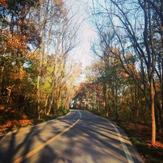 杭州的秋天 Scenery, September, Country Roads, Landscape, Paisajes, Lugares, Nature