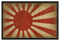 Design of RISING SUN is from old times in Japan. In 1879, it was established as regimental colors. Now, it is used as a regimental colors in the Self-Defense Forces.  It has received the same treatment as the national flag to Japanese.