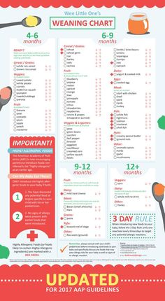 Age guide to introducing solids. Now updated 2017 AAP guidelines for introducing Highly Allergenic Foods! Baby Weaning Chart for 4 to 12 months of solid foods. www.katfrenchdesign.com