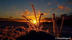 Niklas Falks Bilder, Sundom,Vasa m. Celestial, Sunset, Outdoor, Sunsets, Outdoors, Outdoor Games, Outdoor Living