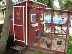 Chicken Coup - I want one.