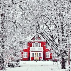 Via danijelivic on instagram | gorgeous red house in the woods with fresh covered snow