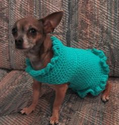 Easy crocheted doggy sweater