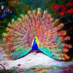 Vintage Peacock Painting Photo Cutouts - I love the rainbow quality by carolina hoover