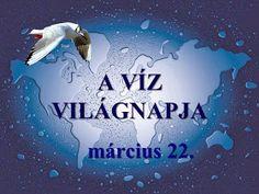 Testvériskolai Projekt Iregszemcse - Győr: A Víz Világnapja Poster, Billboard