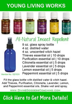 Click here to get more {diy}, holistic insect repellent recipes + more! ~> www.DivineGoddessCoaching.com