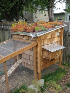 Cute chicken coop with living roof - some day I will have chickens!