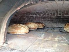 At our last Bread Class, pizza for lunch while the bread proofed! And bread out of the oven Wood Oven, Wood Fired Oven, Bread Oven, Bread Baking, Oven Recipes, Bread Recipes, Bakery Shop Interior, Oven Design, Coffee Shop Bar