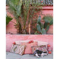 Moon to Moon: Hot : Pretty in Pink Outdoor Walls, Outdoor Spaces, Outdoor Living, Outdoor Furniture, Moroccan Design, Moroccan Style, Moroccan Garden, Exterior Design, Interior And Exterior