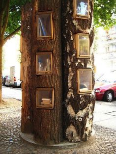 Love this. Perfect. tree-library