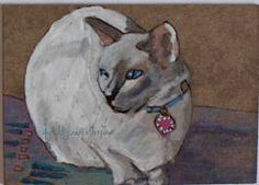 siamese cat art - Google Search