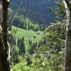 Paysage des Apuseni Mountains, Nature, Travel, Romania, Landscape, Naturaleza, Viajes, Destinations, Traveling