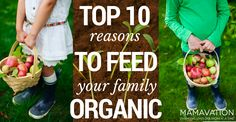 Top 10 Reasons to Feed Your Family Organic