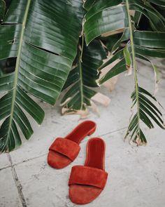 "JULIE SARIÑANA en Instagram: ""Tropical vibes. Always. 🌴"""