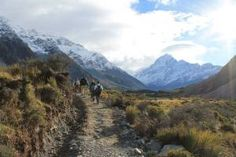 Learning on the Trail into Mt. Cook in New Zealand by Taylor Yeates 2014