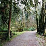 Kanaka Creek is a mile heavily trafficked loop trail located near Maple Ridge, British Columbia, Canada that features a waterfall and is good. Thing 1, British Columbia, Trail, Waterfall, Hiking, Canada, Bike, Plants, Walks