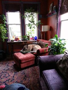 Window table. Tv on top. Plants on each side and hang pictures on the wall on each side. Also the Colors