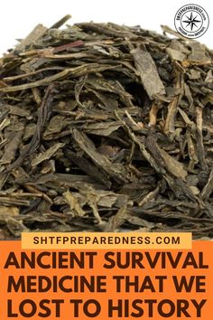 As a huge proponent of health and wellness, I can truly appreciate this great article on ancient survival medicine. Natural Cough Remedies, Cold Home Remedies, Natural Health Remedies, Natural Cures, Natural Healing, Herbal Remedies, Natural Skin, Natural Beauty, Natural Medicine