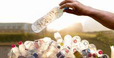 Ein Campus und Plastikflaschen: An der University of California setzen sich Studierende für ein Leben ohne Müll und Plastik ein