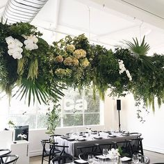 in the green room. Party Centerpieces, Flower Centerpieces, Floral Wedding, Wedding Flowers, Vertical Garden Plants, Wedding Ceiling, Dance Floor Wedding, Flower Installation, Hanging Flowers
