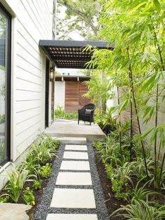 Pebble path with square pavers, bamboo along fence and Flax Lilly