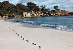 Arthouse Bay of Fires - East Coast, TAS | http://www.viewretreats.com/retreat/arthouse-bay-of-fire #beach