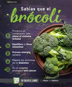 Hábitos Health Coaching | Sabías que el brócoli… Healthy Habits, Healthy Tips, Healthy Recipes, Healthy Food, Health And Nutrition, Health And Wellness, Health Fitness, Foods To Stop Bloating, Keto Diet For Beginners