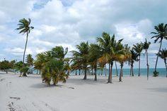 Crandon Park Beach (Key Biscayne, Florida)