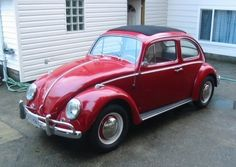 1963 VW Beetle Ragtop. Bought for $400, I think.