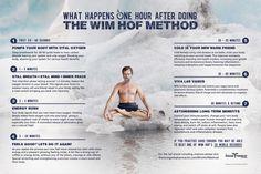 Wim-Hof-Infographic-2 Wim Hof, Breathing Techniques, Meditation Techniques, Relaxation Techniques, Insomnia Causes, Cold Shower, Massage Benefits, Meditation Benefits, Health And Wellness