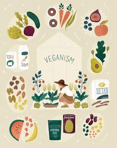 Clare Owen Illustration and Design Illustration Inspiration, Digital Illustration, Fruit Illustration, Web Design, Plant Based Eating, Food Illustrations, Going Vegan, Food Art, Art Paintings