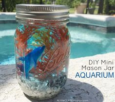 Mason Jar Ideas for Summer - DIY Mini Mason Jar Aquariums - Mason Jar Crafts, Decor and Gifts, Centerpieces and DIY Projects With Jars That Are Perfect For Summertime - Fun and Easy Lights, Cool Vases, Creative of July Ideas Mason Jar Projects, Mason Jar Crafts, Citronella, Aquarium, Mini Mason Jars, Beach Kids, Beach Crafts, Summer Crafts, Holiday Crafts