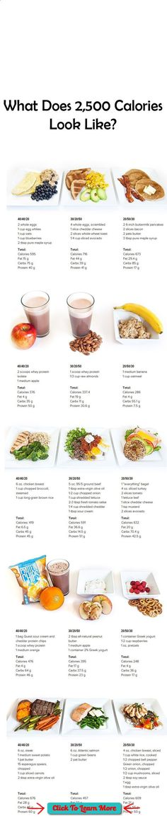 What Does 2,500 Calories Look Like? - Use this handy visual guide to see a days worth of meals (breakfast, snack, lunch, snack and dinner) across 3 different macronutrient ratios!