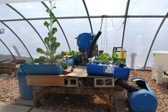 Build a vertical aquaponic veggie & fish farm for small yards & houses #diy #homestead #preppers