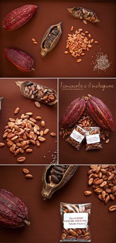 COCOA.... the seeds or nibs are the raw material of commercial chocolate....#1 Ivory Coast, #2 Ghana, #4 Nigeria