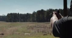 Can This Guy Hit a 300-Meter Shot with a 10mm Pistol? [VIDEO]