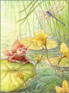 ≍ Nature's Fairy Nymphs ≍ magical elves, sprites, pixies and winged woodland faeries - Petra Brown