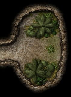 Underdark Passage dead end jungle Campsite lg Fantasy Map, Medieval Fantasy, Dnd Characters, Fantasy Characters, Map Layout, Adventure Map, Dungeon Maps, Fantasy Character Design, Home Brewing