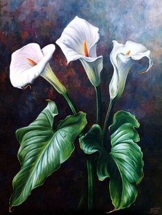 〖Resale * Plant Series ✲ ° Design Naming Book Baby Poster – World of Flowers Lily Painting, Painting & Drawing, Watercolor Paintings, Acrylic Flowers, Watercolor Flowers, Art Floral, Calla Lilies, Painting Inspiration, Flower Art