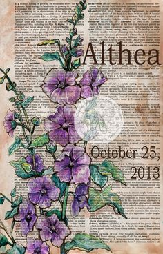 Althea (Hollyhock Flower) Personalized Baby Name Mixed Media Drawing on Distressed, Dictionary Page - flying shoes art studio. But incorporate a picture with the meaning of the name you pick for your child! Book Page Art, Art Pages, Hollyhocks Flowers, Sheet Music Art, Newspaper Art, Dictionary Art, Illustration, Art Graphique, Arte Floral