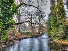 Rivelin Valley, Sheffield by sumowesley, via Flickr